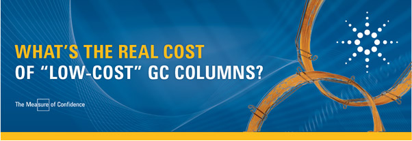 WHAT'S THE REAL COST OF 'LOW-COST' GC COLUMNS